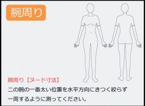 腕周りの測り方 二の腕の一番太い位置を水平方向にきつく絞らず 一周するように測ってください。