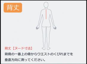 背丈の測り方 背骨の一番上の骨からウエストのくびれまでを 垂直方向に測ってください。