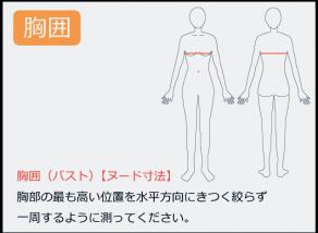 胸囲の測り方 胸部の最も高い位置を水平方向に絞らず一周するように測って下さい。