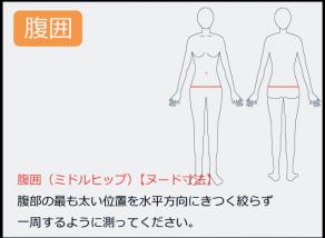 ウエストの測り方 腹部の最も太い位置を水平方向にきつく絞らず一周するように測って下さい。